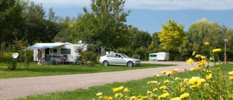 Camping Les Platanes is een rustige familiecamping met zwembad vlakbij de rivier de Ouanne in het dorpje Charny (Yonne) in de Bourgogne (Bourgondië)