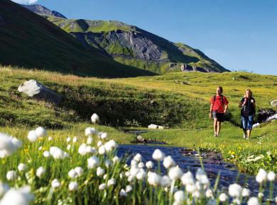 Familiecamping le Reclus is een mooie kleine camping gelegen in Seez, Savoie, Rhône-Alpes. Deze camping is het gehele jaar geopend. Natuurliefhebbers kunnen hier hun hart ophalen, want de camping ligt midden in de prachtige natuur en tussen de bergen van de Rhône-Alpes.
