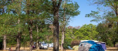 Camping de l'Île is een mooie familiecamping gelegen in Centre-Val-de-Loire aan de rivier de Loire. Deze camping is groen en heeft 180 tal kampeerplekken. Geniet van de ruimte op het terrein van 6 hectare groot. De kampeerplekken zijn ruim opgezet en daardoor geniet u optimaal van uw privacy.