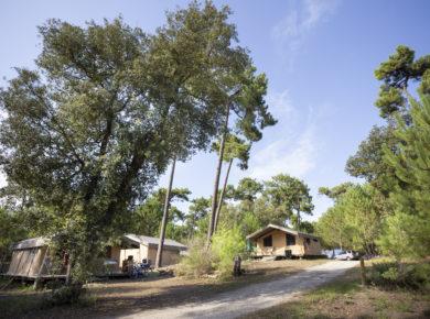 Camping Huttopia Les Chênes verts