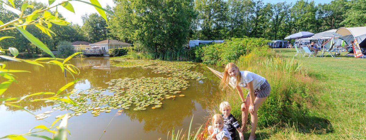 Prachtig groen vakantiepark in Brabant met waterparadijs, natuurterrein aan het recreatiemeer 's Smokkelstrand met glijbanen, speeltuin en strand.
