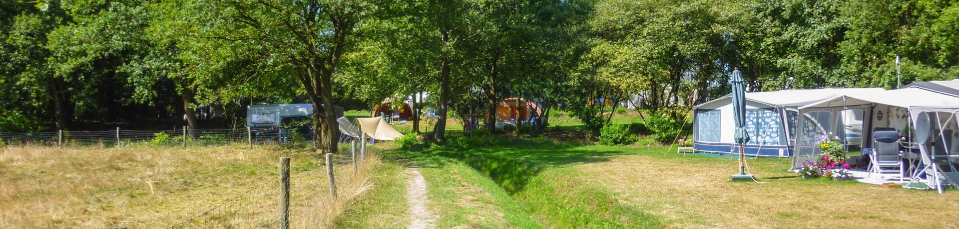 Landclub Ruinen in Ruinen ist ein Charme Camping mit Schwimmbad in Drente am Wald.