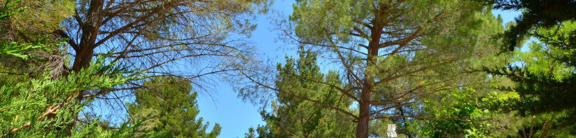 Camping Sainte-Victoire is een in de omgeving van Beaurecueil, Bouches-du-Rhône in Provence-Alpes-Côte d'Azur gelegen op het platteland.