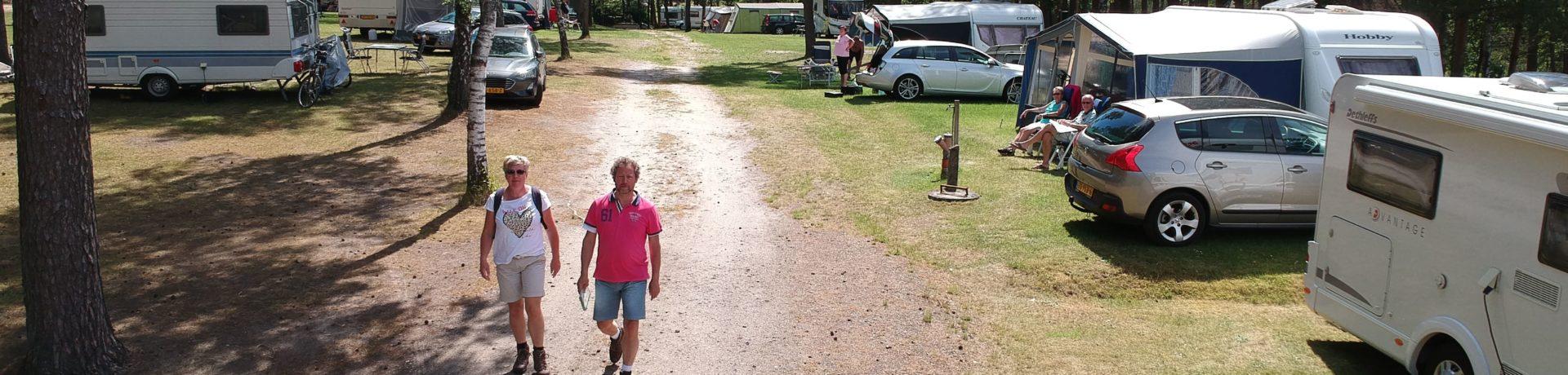 Camping Sonnenberg in Faßberg ist ein Charme Camping in Niedersachsen.Entdecken Sie die Gastfreundschaft, Gemütlichkeit und den Service.