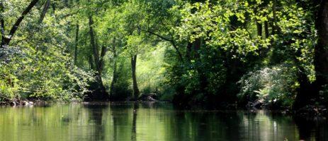 Heerlijke kleine camping in de Allier met zwembad, safaritenten en vakantiehuisjes gelegen aan een rivier in de groene Auvergne.