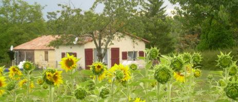 Camping Chez Philipaud in Montmérac is een kleine natuurcamping in het departement Charente in de Franse regio Nouvelle-Aquitaine.