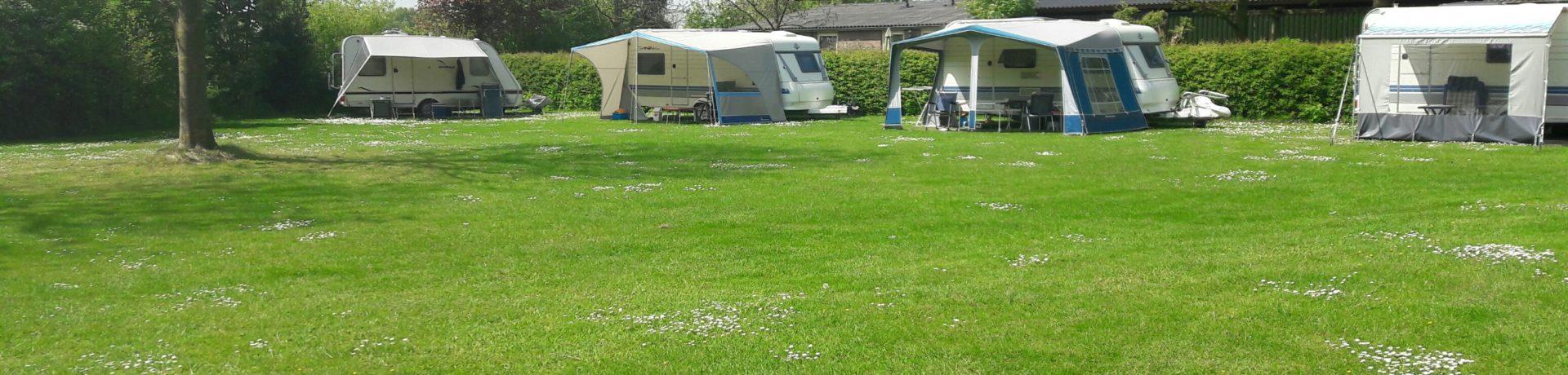 Prachtige rustige kleine camping in Silvolde gemeente Oude IJsselstreek in de provincie Gelderland met 17 ruime plaatsen omringd door weilanden en een eigen bosje.
