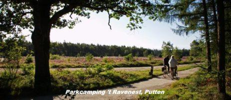 Parkcamping 't Ravenest is een heerlijke natuurcamping in Putten in de provincie Gelderland met 12 comfortabele kampeerplaatsen.