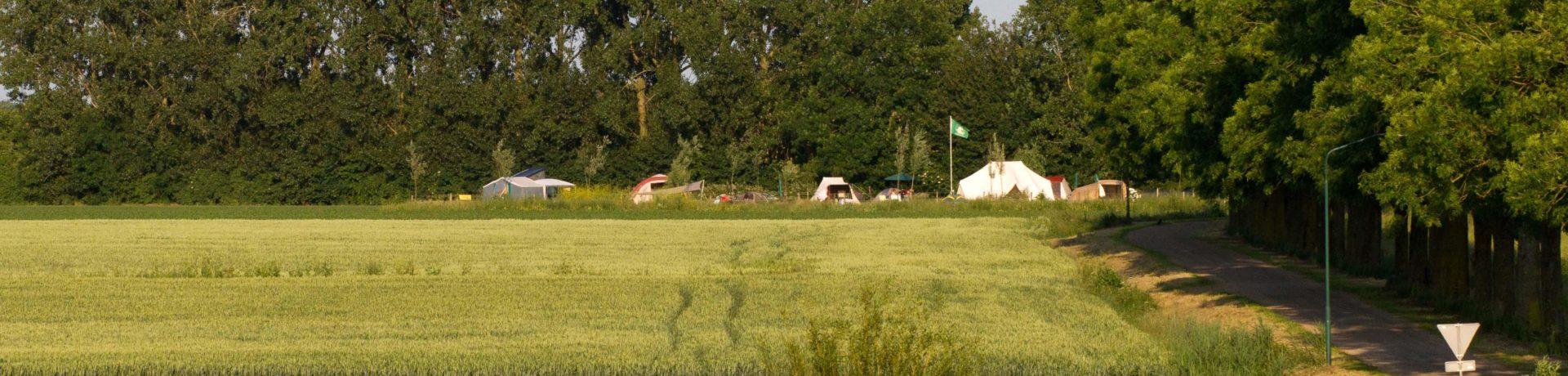 Camping de Maasakker is een rustige natuurcamping in de provincie Noord-Brabant in de uiterwaarden van de Maas.