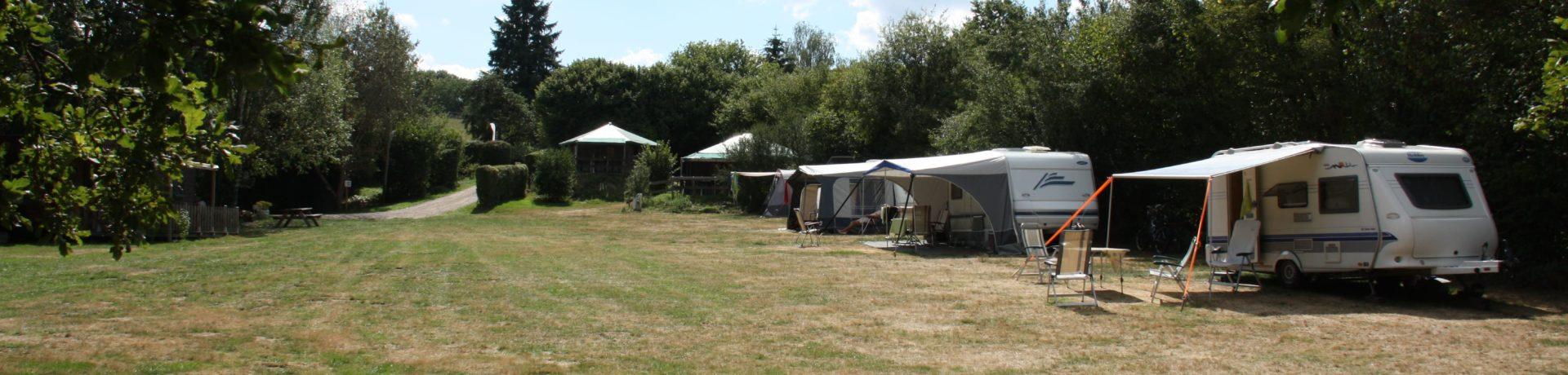 Kleine camping op een natuurlijk, iets glooiend terrein, omgeven door houtsingels en een paar prachtige grote oude eiken. U kampeert rondom een ruim veld, dat in het voorjaar in een bloementapijt verandert