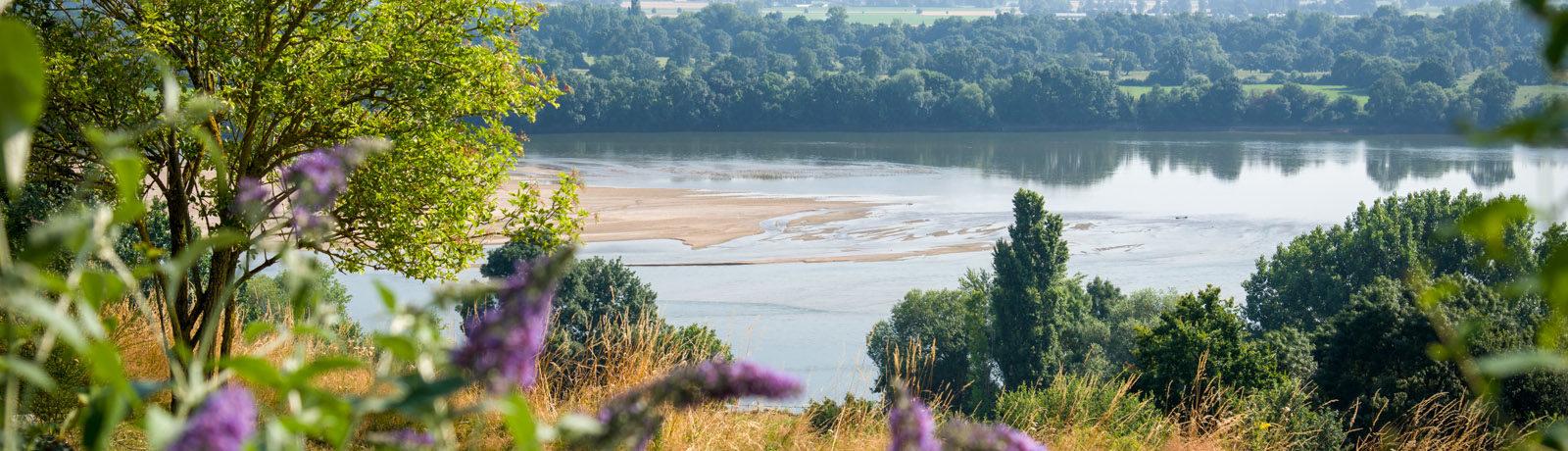 Camping Huttopia Saumur in Saumur is een natuurcamping in Pays de la Loire gelegen aan een rivier vlakbij de bezienswaardigheden van de Maine-et-Loire.