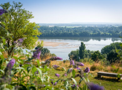 Camping Huttopia Saumur is een mooie 5-sterren camping met zwembad in n een natuurgebied vlakbij Saumur in Maine-et-Loire (Pays de la Loire).