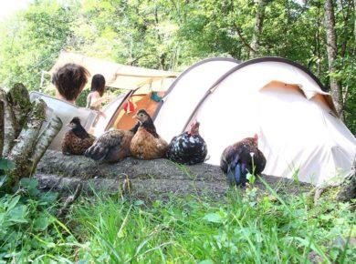 Camping Mouline Begeot is een camping in de Haute-Saône in de regio Bourgogne-Franche-Comté. Het is een gezellige boerencamping, waar je tussen de dieren slaapt.