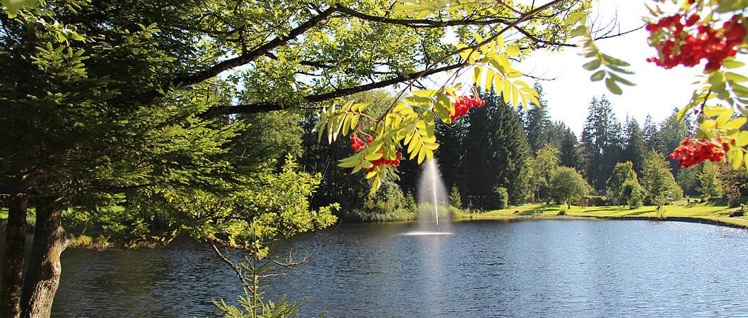 Waldbad Camping Isny in Isny is een middelgrote camping met zwemgelegenheid in het Duitse Baden-Württemberg