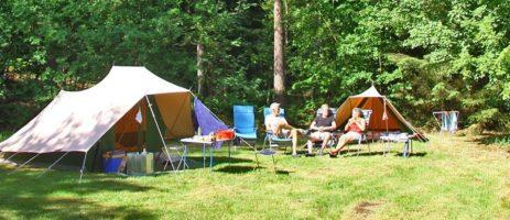 Kamperen in Drenthe? Geniet van een onvergetelijke vakantie op Camping 't Vlintenholt. Kamperen in het bos van Staatsbosbeheer.