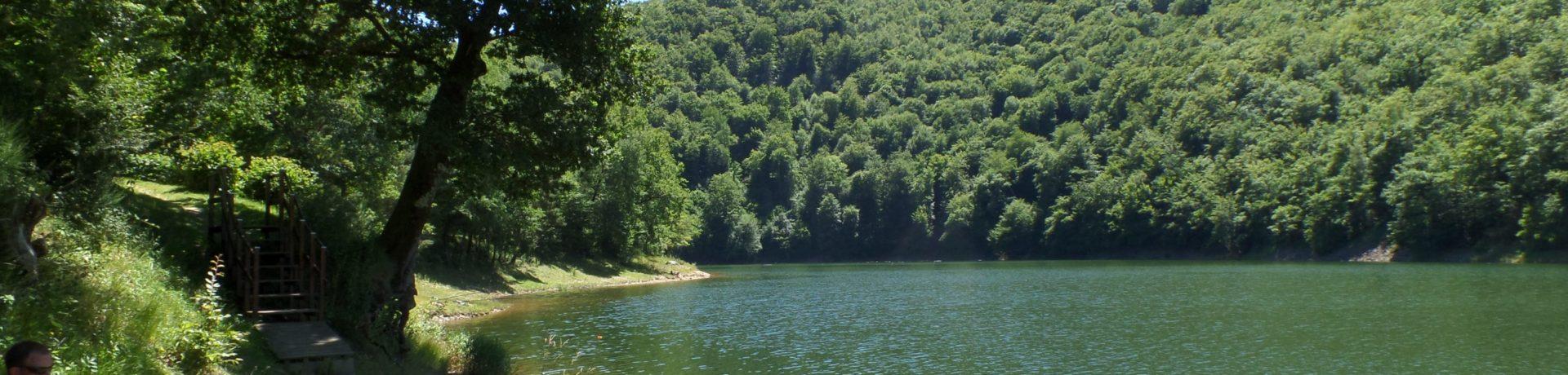 Kleine, gemoedelijke camping in Frankrijk zonder animatie direct gelegen aan een groot meer in de Cantal in het zuiden van de Auvergne.