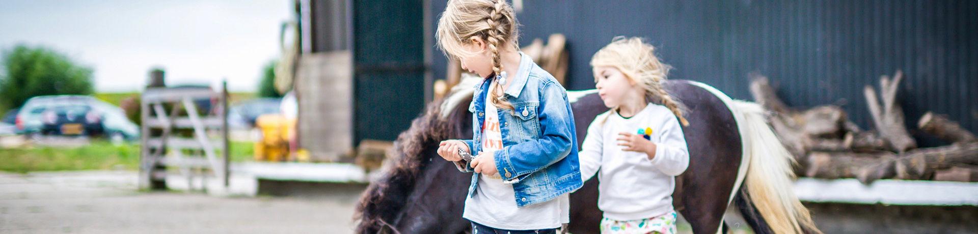 Op FarmCamps Five Star boerderij in Zeeland logeer je in een luxe Safari- of Lodgetent. De kids kunnen heerlijk rondstruinen en meehelpen op het erf.