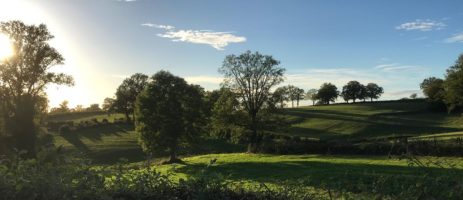 Geniet van een rustige vakantie op de minicamping Le Bonheur Vert in het groene hart van Frankrijk midden in de weilanden van het groene departement Allier.