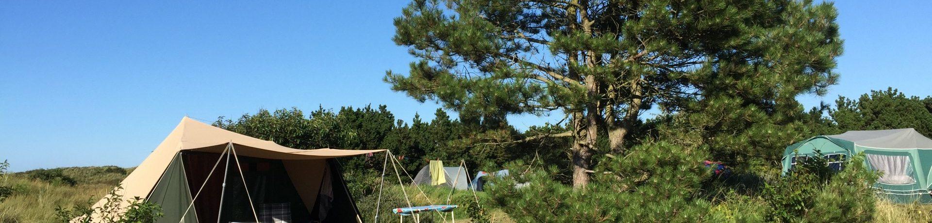 Laat je verassen door de natuur! Camping Duinoord is een camping direct aan het strand en gelegen in de duinen van het waddeneiland Ameland.