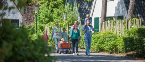 Camping De Katjeskelder is een gunstige gelegen familiecamping in een bosrijk gebied van Noord-Brabant die beschikt over een zwembad en animatie.